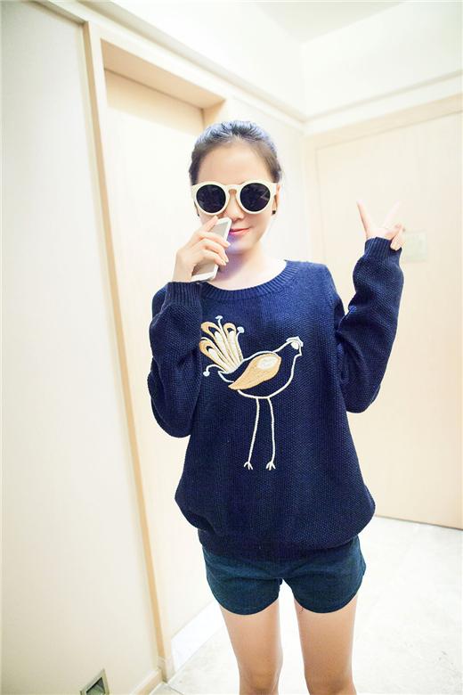【小鸡动物刺绣显瘦套头毛衣】-衣服-其他毛衣