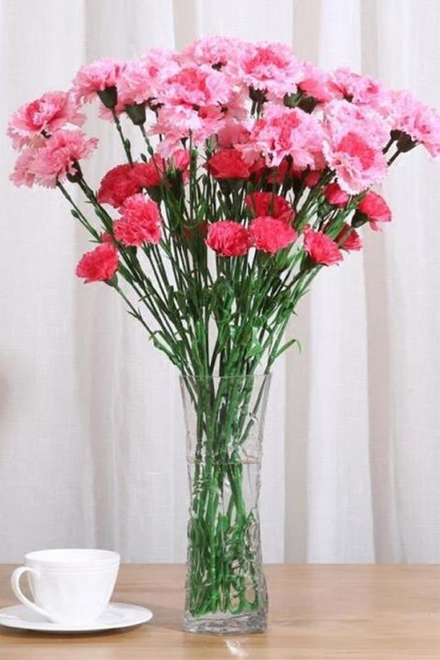 10支假花康乃馨仿真花塑料花干花花束玫瑰花客厅家居摆件装饰品图片