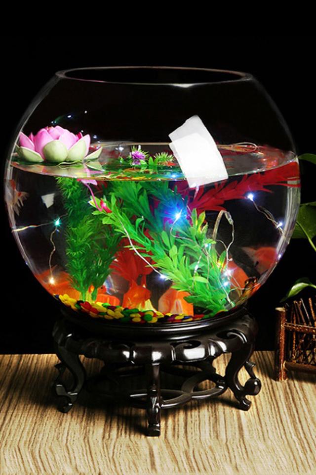 鱼缸透明玻璃办公桌创意客厅圆形龟缸小型乌龟迷你桌面金鱼小鱼缸图片