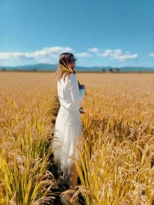 米色太好看了,裙子也非常厚实,这个季节穿正好,拿回来就穿着拍照了,朋友都说好看!!! #叶子yzzz粉丝晒单#