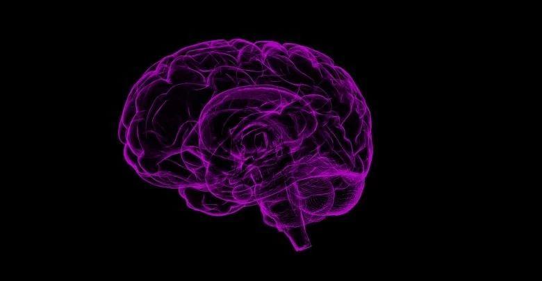 通过脑部扫描和3D打印揭示了多发性硬化症的信息